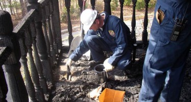 Arson Investigation Books: Investigating the Cause of Fires