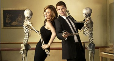 Bones Television Series: TV Drama About Crime Scene Forensics