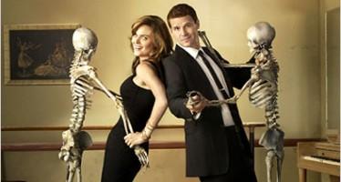 Bones Television Series  Season Episodes on DVD