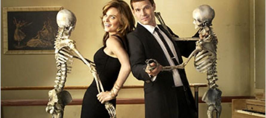 Bones Television Series: TV Drama About Crime Scene Forensics