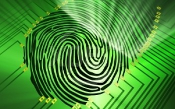 Fingerprinting Processes, Products and Services used to Lift Prints