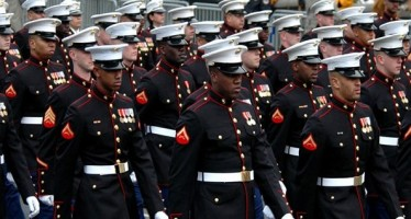United States Marine Core (USMC) Branch of the U.S. Military