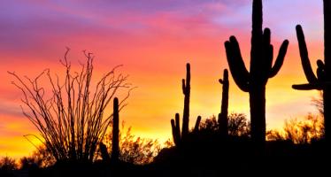 Arizona Private Investigators and Investigation Agencies for Hire