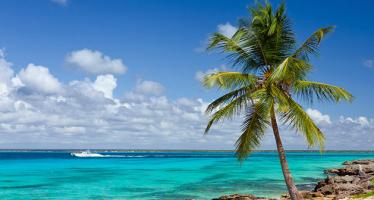 Dominican Republic Private Investigators and Investigation Agencies