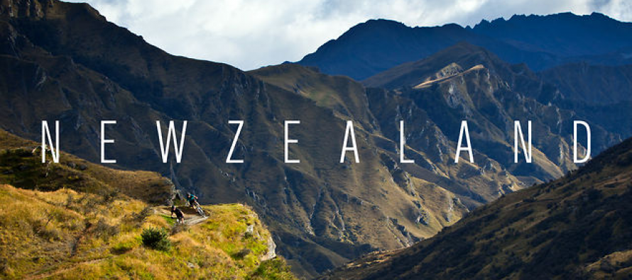 New Zealand Private Investigators and Investigation Agencies