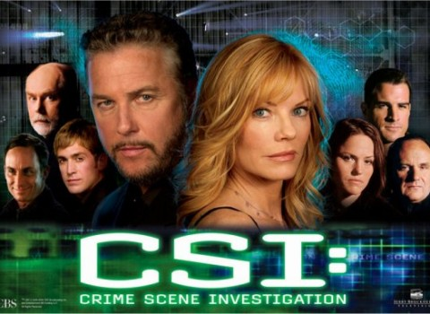 CSI Television Series on DVD