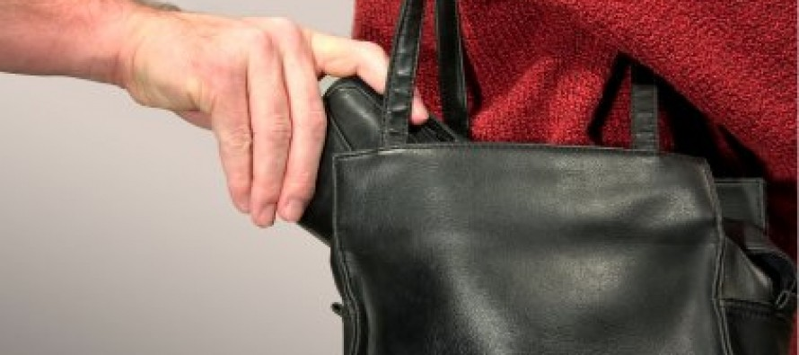 Law Enforcement Advises Precautions for Holiday Shoppers